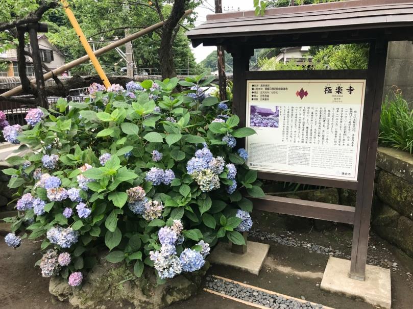 kamakurashi-22.jpg