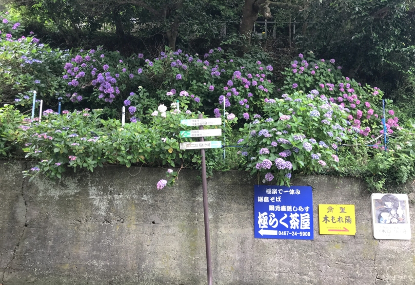 kamakurashi-17.jpg